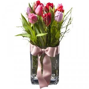 Tulpenprinzessin (inkl. Vase)